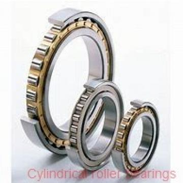 2.756 Inch | 70 Millimeter x 4.921 Inch | 125 Millimeter x 0.945 Inch | 24 Millimeter  NACHI NU214MY C3  Cylindrical Roller Bearings