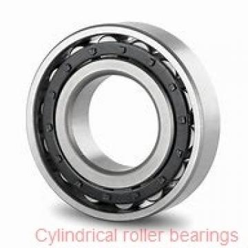 3.346 Inch | 85 Millimeter x 5.906 Inch | 150 Millimeter x 1.102 Inch | 28 Millimeter  NACHI NU217MY C3  Cylindrical Roller Bearings